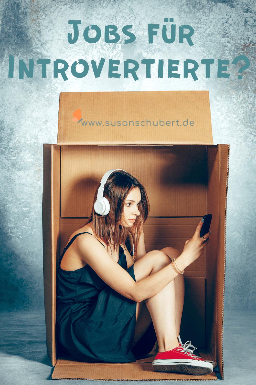 job für introvertierte